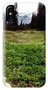 Mount Ranier Cabin IPhone Case