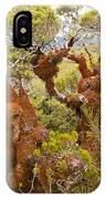Mountain Beech Rain Forest In Fjordland Np Nz IPhone Case