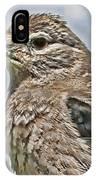 Mountain Bird IPhone Case