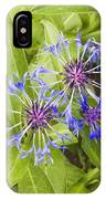 Mountain Bluet Flowers IPhone Case