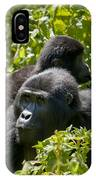 Mountain Gorilla With Infant  IPhone Case