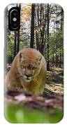 Mountain Lion Stalking IPhone Case