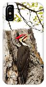 Mr.pileated Poses IPhone Case