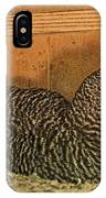 Mrs. Chicken Laying On Her Nest IPhone Case