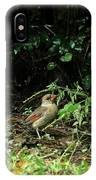 Ms Cardinal Picking Berries IPhone Case