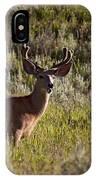 Mule Deer In Velvet   #2114 IPhone Case