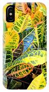 Multi-colored Croton IPhone Case