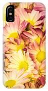 Multi-colored Daisies IPhone Case