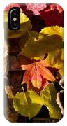 Mushrooms In Fall Leaves IPhone Case