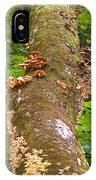 Mushroom's Kingdom IPhone Case
