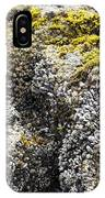 Mussels Barnacles Seaweed Closeup IPhone Case