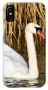 Mute Swan By Reed Beds IPhone Case