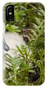 Mute Swan Pictures 210 IPhone Case