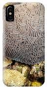 My Brain Underwater IPhone Case