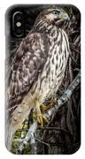 My Hawk Encounter IPhone Case