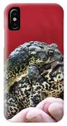 My Not So Beautiful Friends IPhone Case
