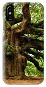 Mystical Angel Oak Tree IPhone Case by Louis Dallara