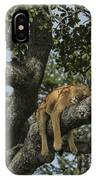 Nap Time On The Serengeti IPhone Case