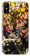 Napa Fall Grapes IPhone Case