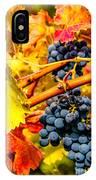 Napa Valley Grapes, California IPhone Case