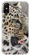 Naples Zoo - Leopard Relaxing 1 IPhone Case