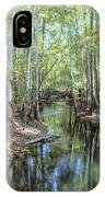 Natural Bridge Springs IPhone X Case