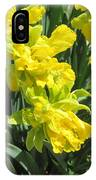 Naturalized Daffodils On The Farm IPhone Case