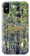 Nature In Autumn 2012 IPhone Case