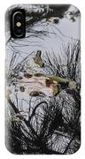 Nature Is My Beloved Artist IPhone Case