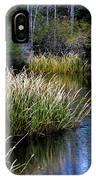 Nature Walk 2 IPhone Case
