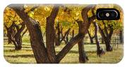 Natures Gold 2 IPhone Case