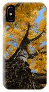 Nature's Gold IPhone Case