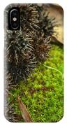 Nature's Moss And Sweetgum Pods IPhone Case