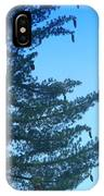 Natures Ornaments IPhone Case