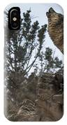 Natures Song IPhone Case