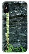 Navelwort And Maidenhair Spleenwort IPhone Case