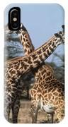 Necking Giraffes IPhone Case