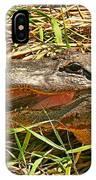 Nesting Alligator IPhone Case