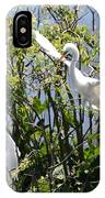 Nesting Great Egrets IPhone Case