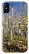 New Mexico Series -  Bare Autumn IPhone Case