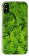 New York Ferns IPhone Case