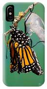 Newly-emerged Monarch Butterfly IPhone Case
