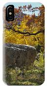Nice Setting For A Rock IPhone Case
