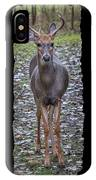 Curious Yearling Deer IPhone Case