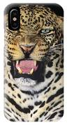 No Solicitors African Leopard Endangered Species Wildlife Rescue IPhone Case