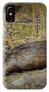 North American Beaver IPhone Case
