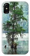 North Florida Cypress Swamp IPhone Case