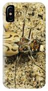 Northern Beach Tiger Beetle Marthas IPhone Case