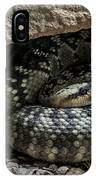 Northern Black-tailed Rattlesnake 2 IPhone Case