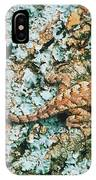 Northern Fence Lizard IPhone Case